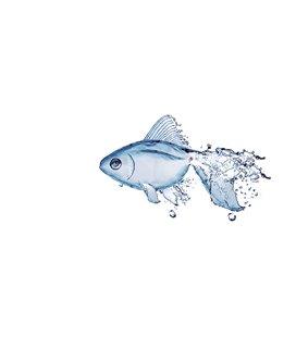Плитка Almera Ceramica DEC FISH-1 (235939)