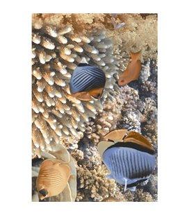 Плитка Golden Tile Agat голубой декор И33321